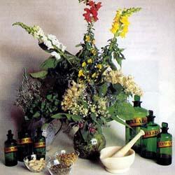 Гомеопатія