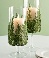 Вічнозелені новорічні свічки
