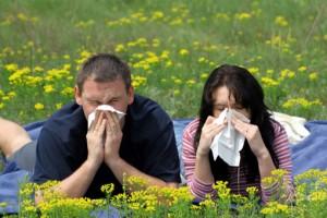 Алергія на любов