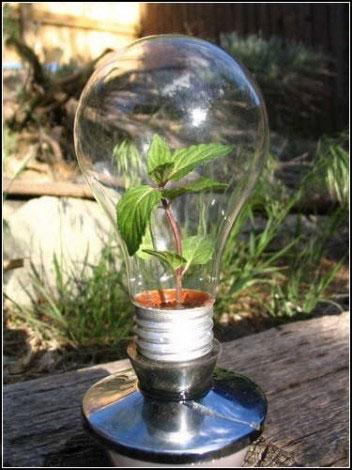 Декор з лампочок - 10