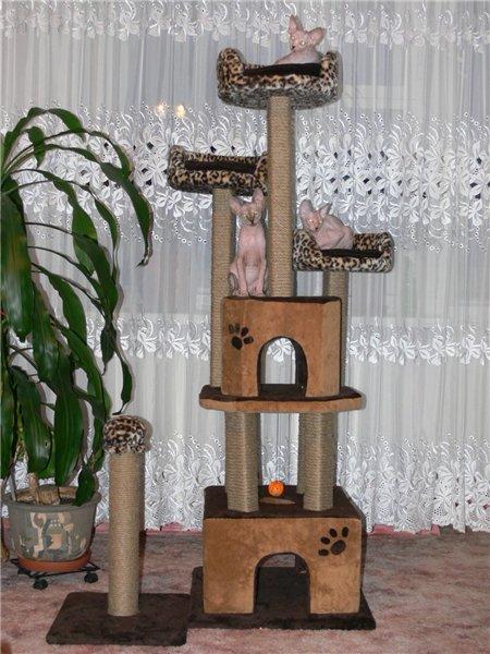 Будиночки для кішок - фото 8