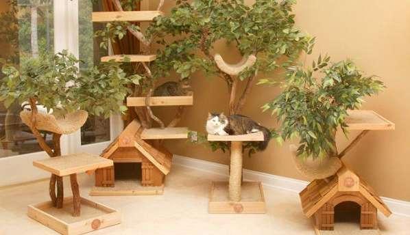 Будиночки для кішок - фото 1