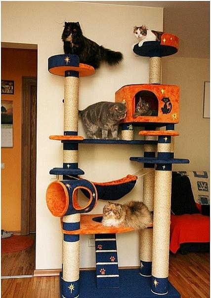 Будиночки для кішок - фото 12