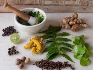Народні рецепти лікування варикозу