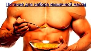 Дієта для м'язової маси