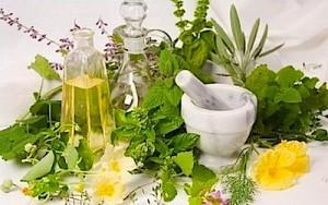 Лікування порушеної щитовидної залози травами